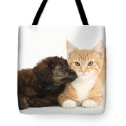 Ginger Kitten And Toy Poodle Tote Bag
