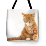 Ginger Kitten Tote Bag