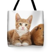 Ginger Kitten With Red Guinea Pig Tote Bag