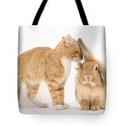 Ginger Kitten With Sandy Lionhead Rabbit Tote Bag