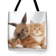 Ginger Kitten Young Lionhead-lop Rabbit Tote Bag