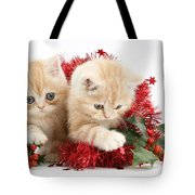 Ginger Kittens Tote Bag