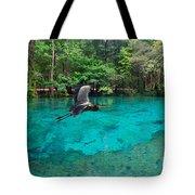 Ginnie Springs Tote Bag