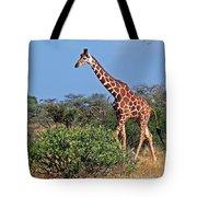 Giraffe Against Blue Sky Tote Bag