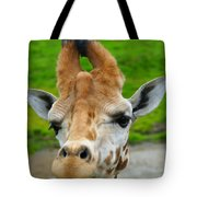 Giraffe In The Park Tote Bag