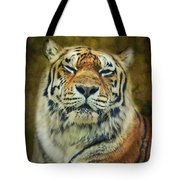 Give Me Your Tender Look Tote Bag