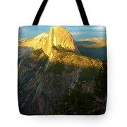 Glacier Point Tree Tote Bag