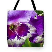 Gladiola Blossom 2 Tote Bag