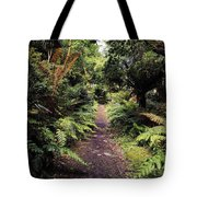 Glanleam, Co Kerry, Ireland Path In The Tote Bag