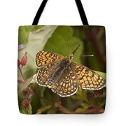 Glanville Fritillary Tote Bag