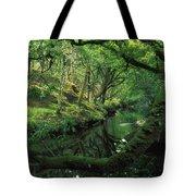 Glengarriff River, County Cork, Ireland Tote Bag