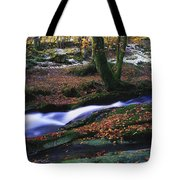 Glenmacnass Waterfall, Co Wicklow Tote Bag