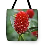 Globe Amaranth Tote Bag