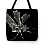 Glorios Superba In Black And White Tote Bag