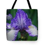 Glorious Iris Tote Bag