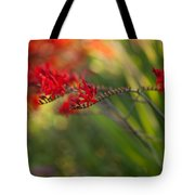 Glorious Red Tote Bag
