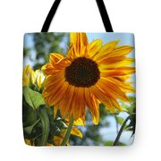 Glory Glory Sunflower Tote Bag