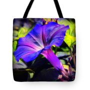 Glory Of The Morning Tote Bag