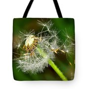 Glowing Dandelion Spores Tote Bag