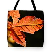 Glowing Gold Tote Bag