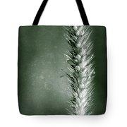 Glowing Grass Seedhead Tote Bag