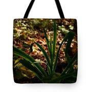 Glowing Iris Plant 3 Tote Bag
