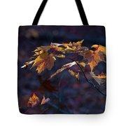 Glowing Maple Leaves Tote Bag