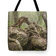 Gnarly Old Tree In Fog Along The Blue Ridge Parkway Tote Bag by Bill Swindaman