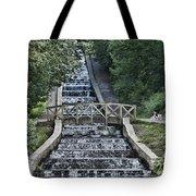 Gnoll Country Estate Tote Bag