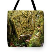 Gnomes In The Rainforest Tote Bag