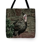 Gobble Time Tote Bag