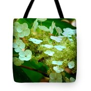 Going In For The Sweet Stuff Tote Bag