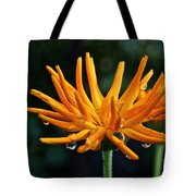 Gold Fingers Tote Bag