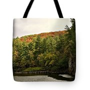 Gold Trimmed Trees Tote Bag