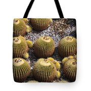 Golden Barrel Cactus 2 Tote Bag