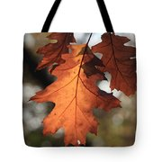 Golden Fall Leave's Close Up Tote Bag