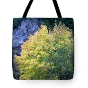Golden Fall Tote Bag
