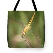 Golden Glow In The Marsh Tote Bag