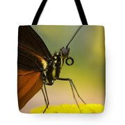 Golden Helicon On Flower Tote Bag