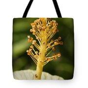 Golden Hibiscus Stamen Tote Bag