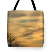 Golden Hue Tote Bag