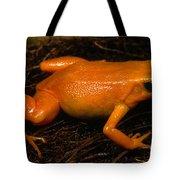 Golden Mantella Tote Bag