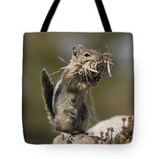 Golden-mantled Ground Squirrel Tote Bag