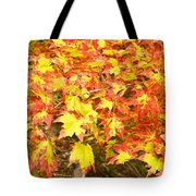 Golden Maple Leaves Tote Bag
