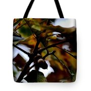 Golden Oak At Nightfall Tote Bag