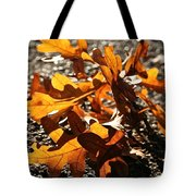 Golden Oak Shadows Tote Bag