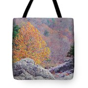 Golden Poplar Among The Rocks At Johnsons Shut Ins State Park Tote Bag