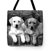 Golden Retriever Pups Tote Bag