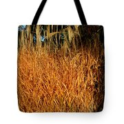 Golden Silver Grass Tote Bag
