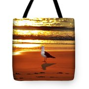 Golden Sunrise Seagull Tote Bag